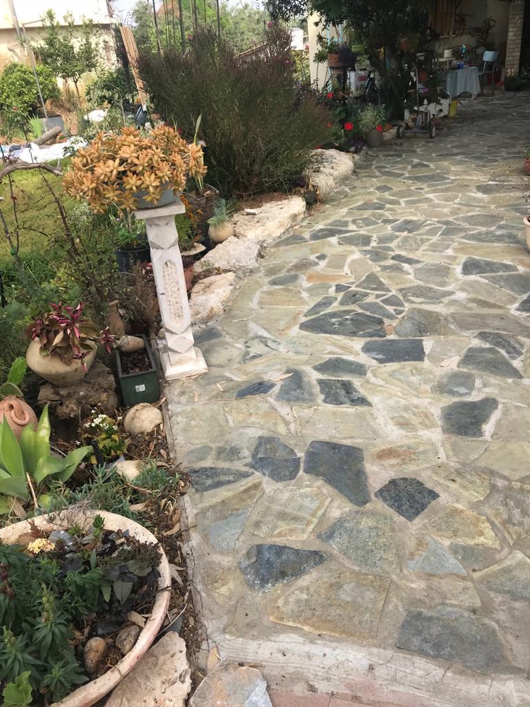 אבן פראית לגינה